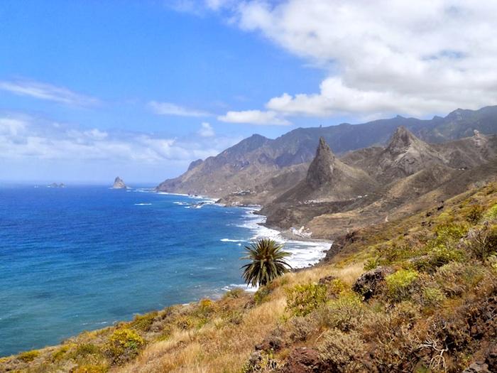 Excursion Anaga natural reserve & la laguna tour on minivan with guide
