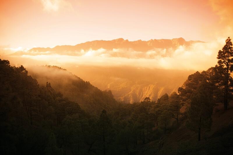 Excursion Parc national de la caldera de taburiente par autobus